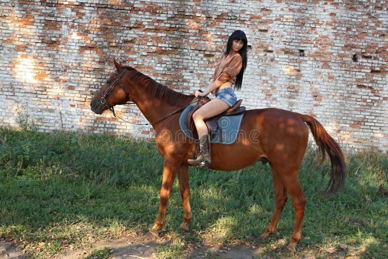 Il cavaliere della ragazza fotografia stock libera da diritti