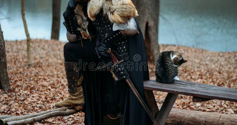 Il cavaliere medievale con la spada in armatura nella foresta un gatto si siede vicino un uomo in armatura, con un mantello del l immagini stock libere da diritti