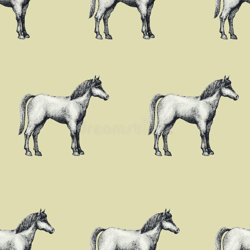 Il cavallo, annata ha inciso il modello senza cuciture di vettore Può essere l'uso per i negozi ed i mercati di alimento biologic illustrazione di stock