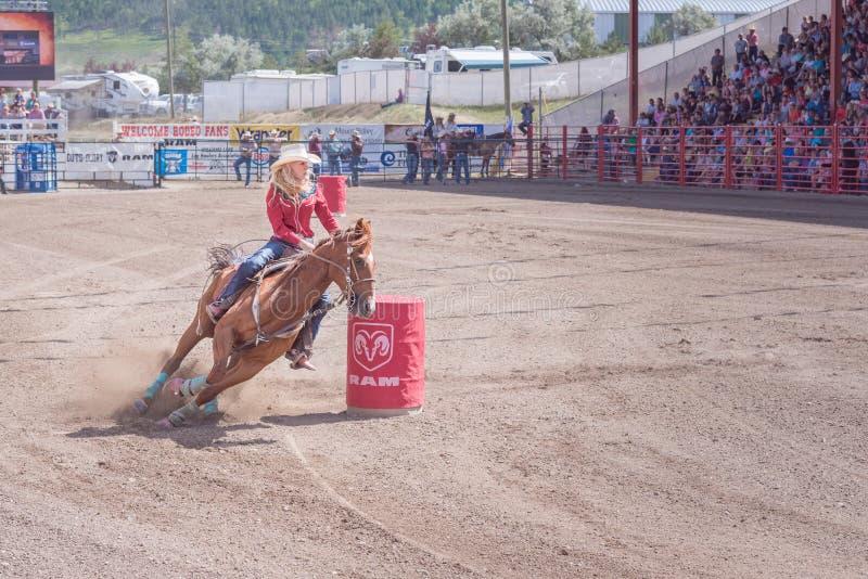 Il cavallo ed il cavaliere corrono intorno al secondo barilotto a Williams Lake Stampede immagini stock libere da diritti
