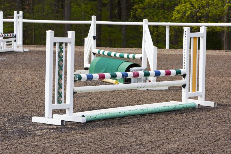 Il cavallo equestre salta immagini stock