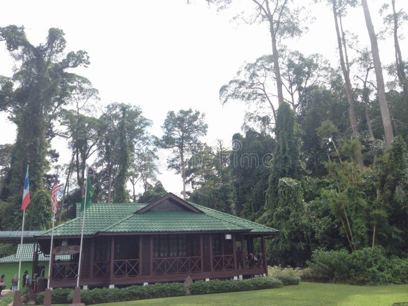 Il centro RDC di scoperta della foresta pluviale è l'ingresso a familiarizzarsi con l'unicità e l'importanza delle foreste pluvia immagine stock