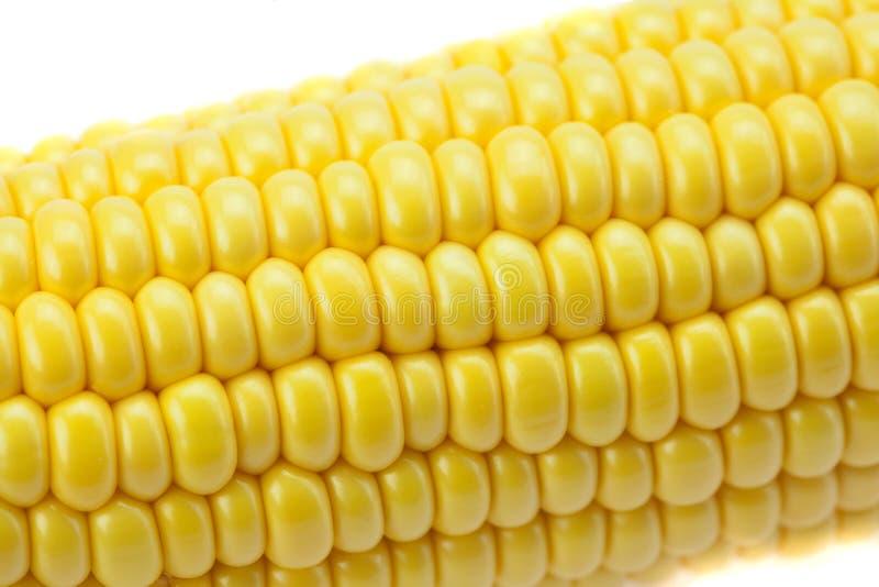 Il cereale è isolato su un bianco fotografie stock
