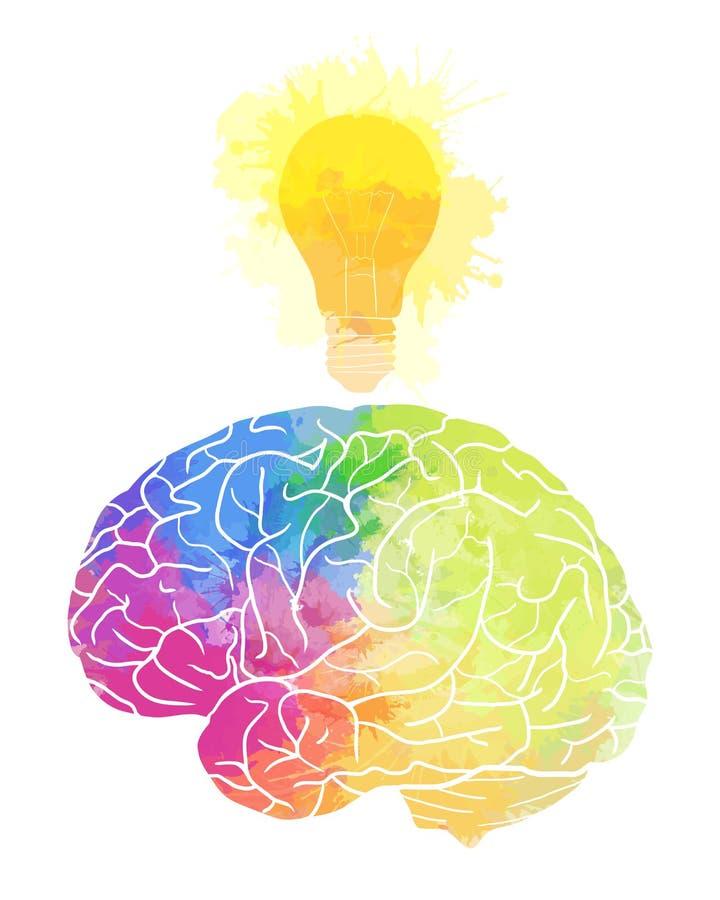 Il cervello umano con l'acquerello dell'arcobaleno spruzza e una lampadina illustrazione vettoriale