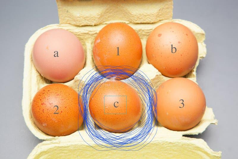 Il chickHalf fresco un dozzina polli freschi eggsen le uova immagine stock