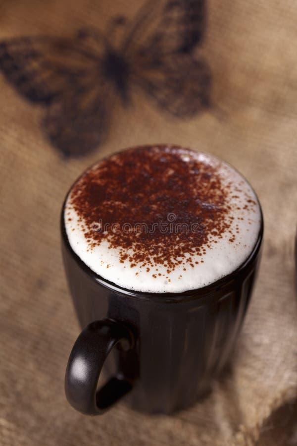 Il chokolate schiumoso caldo del cappuccino della bevanda ha impolverato fotografie stock libere da diritti
