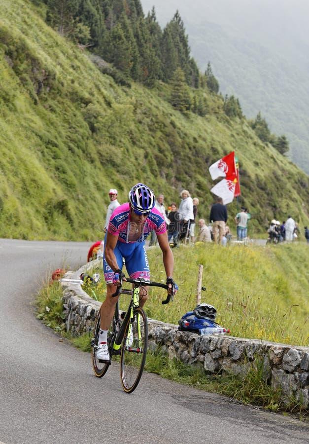 Il ciclista Alessandro Petacchi immagini stock