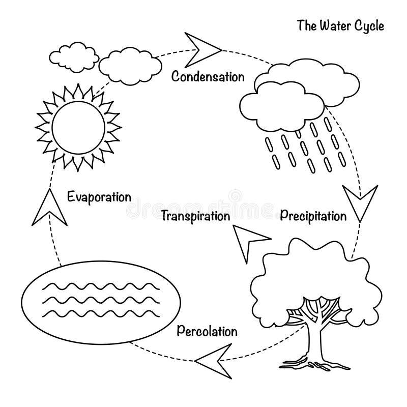 Il ciclo dell'acqua illustrazione di stock