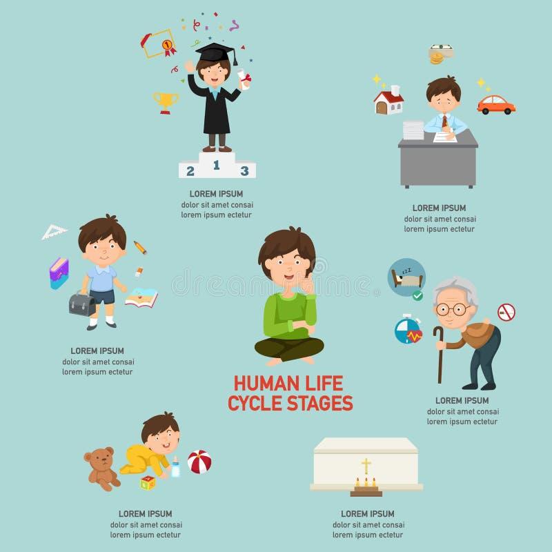 Il ciclo di vita umana mette in scena infographic illustrazione di stock