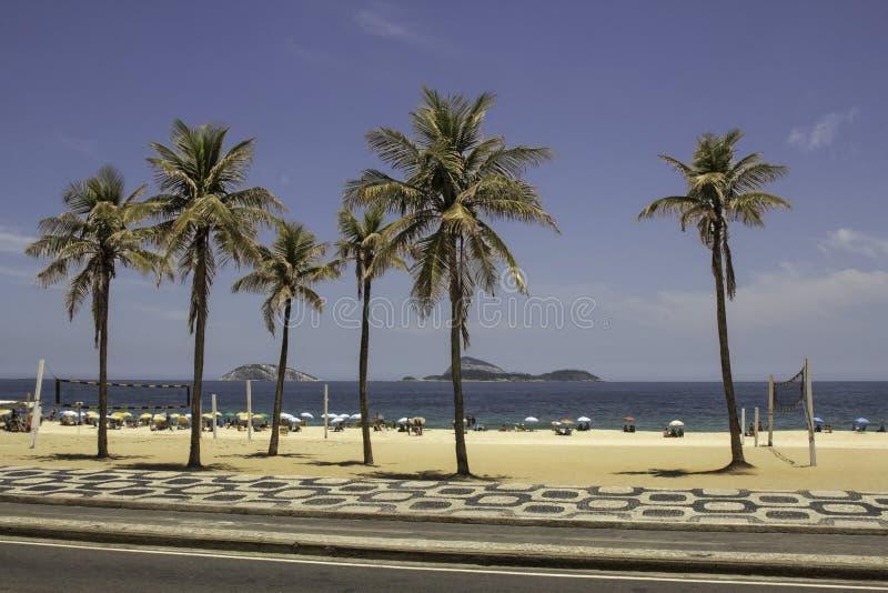 Il cielo blu e le palme su Ipanema tirano in Rio de Janeiro Brazil immagine stock libera da diritti