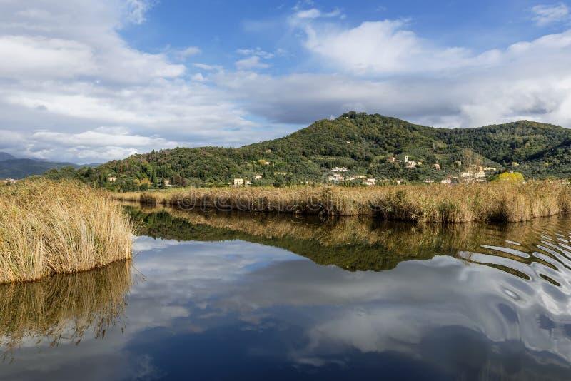 Il cielo ed il villaggio di Massaciuccoli sono riflessi nelle acque del lago omonimo, Lucca, Italia immagine stock