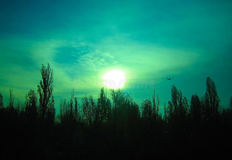Il cielo verde inesplicabile immagini stock