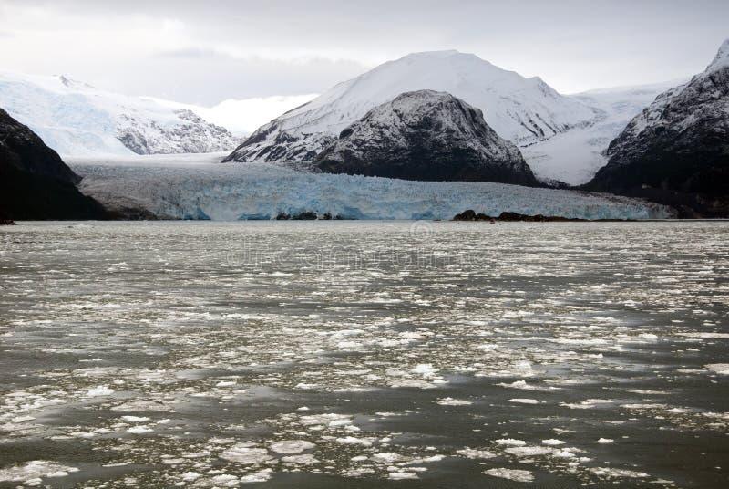 Il Cile - Amalia Glacier Landscape fotografia stock libera da diritti
