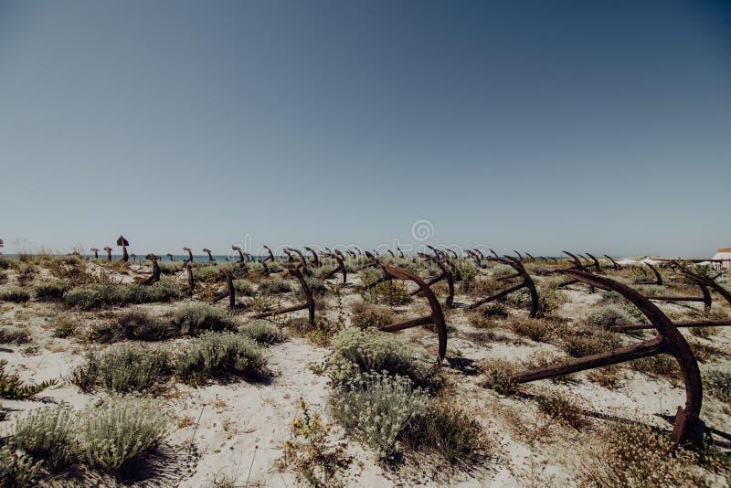 Il cimitero dell'ancora nella Praia della spiaggia fa Barril, Tavira in Algarve, Portogallo fotografia stock