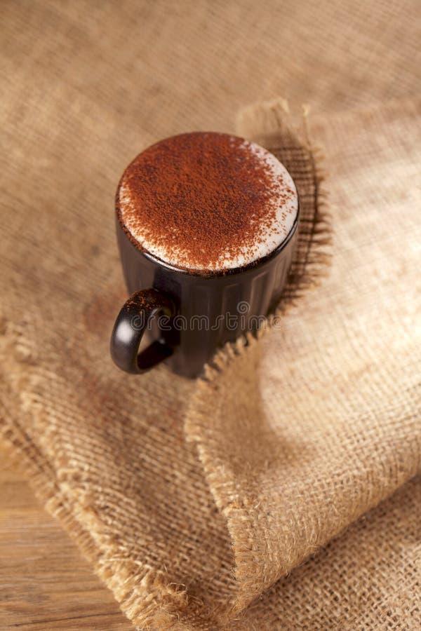 Il cioccolato schiumoso caldo del cappuccino della bevanda ha impolverato fotografia stock