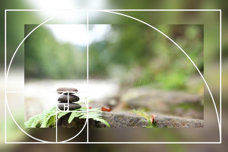 Il ciottolo d'equilibratura di zen lapida all'aperto contro fondo vago fotografia stock libera da diritti