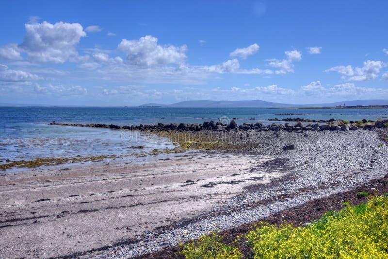 Il Claddagh Galway in Galway, Irlanda immagine stock