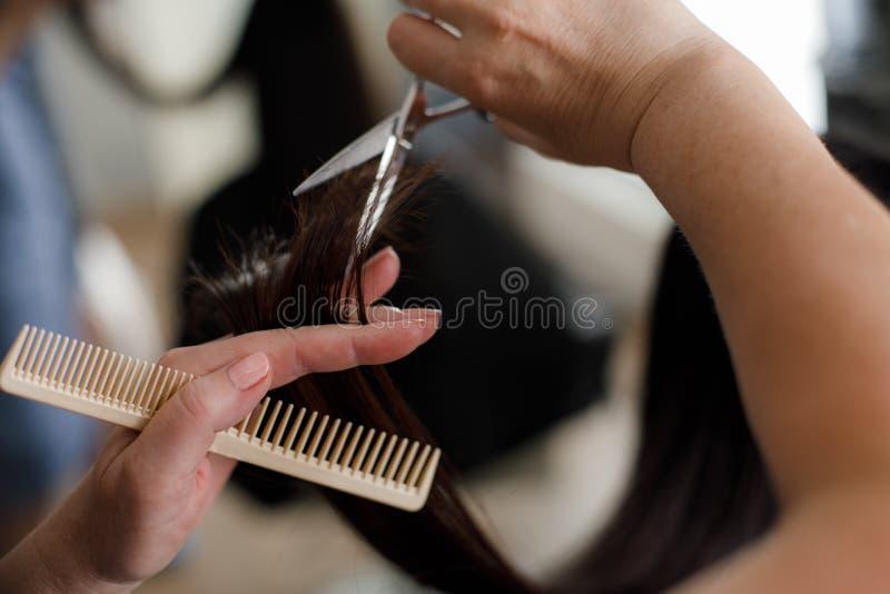 Il cliente sta ottenendo i capelli tagliati dal professionista fotografia stock
