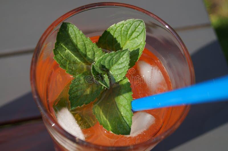 Il cocktail fresco con spritz immagine stock