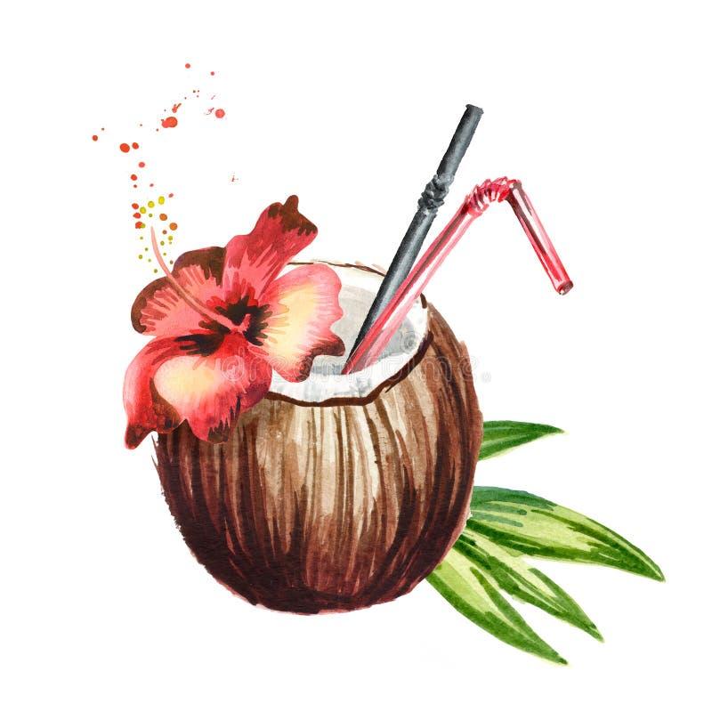 Il cocktail fresco tropicale della noce di cocco decorato con l'ibisco rosso fiorisce Illustrazione disegnata a mano dell'acquere illustrazione di stock