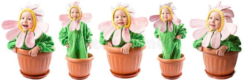 Il collage della neonata adorabile si è vestito in costume del fiore immagini stock libere da diritti