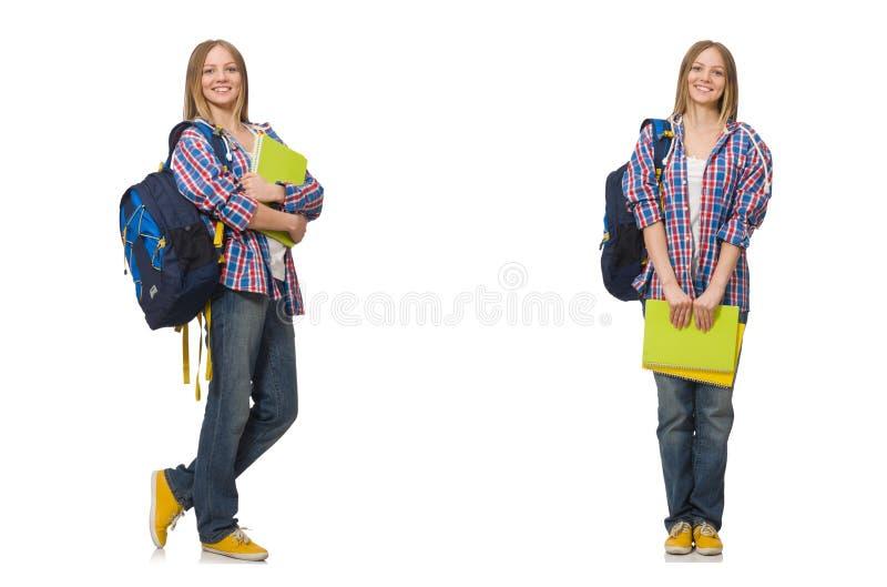 Il collage di giovane studentessa su bianco fotografia stock