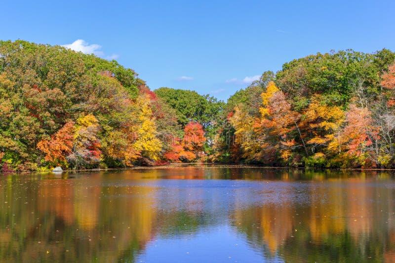 Il colore di caduta è arrivato in Nuova Inghilterra immagini stock