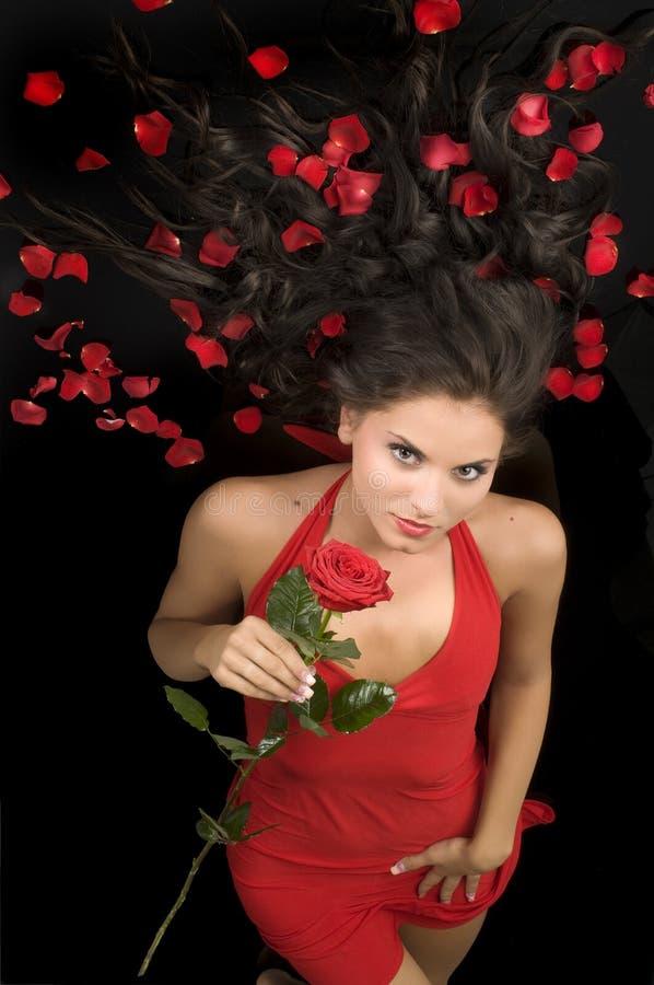 Il colore rosso rosso del vestito è aumentato immagine stock