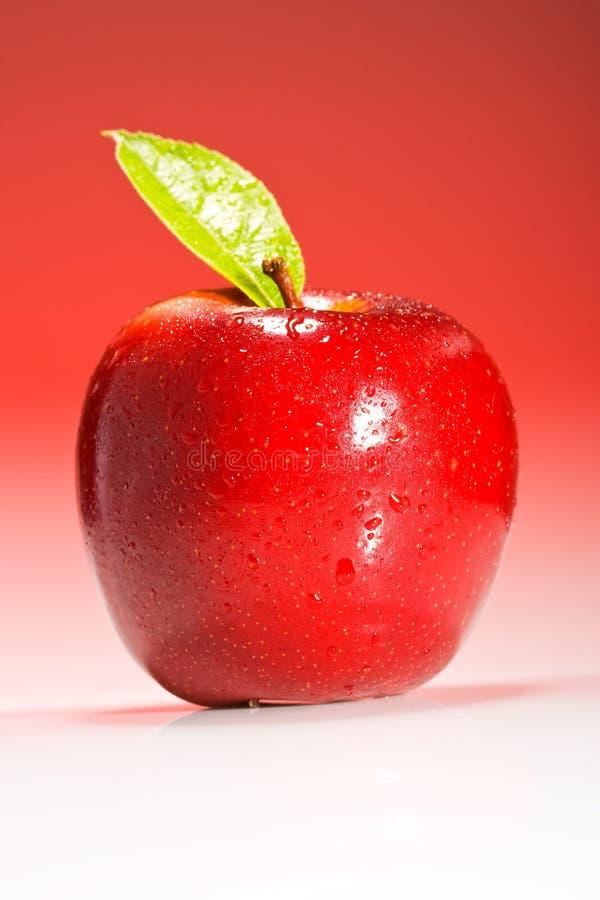Il colore rosso Shinny Apple con le gocce dell'acqua immagini stock libere da diritti