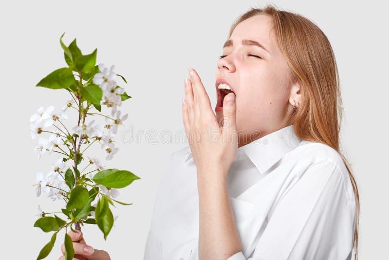 Il colpo isolato di giovane donna sveglia che è allergetic al fiore della molla, starnutisce, tiene la bocca ampiamente si è aper fotografie stock libere da diritti