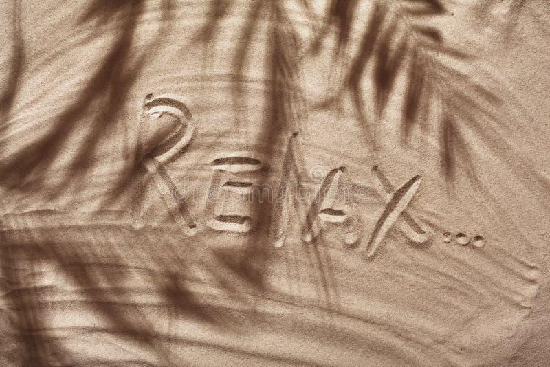 Il concetto dell'estate con un'ombra di una palma tropicale va, copyspace su una sabbia bianca della spiaggia immagine stock