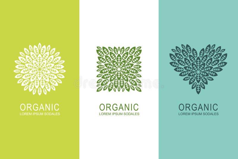 Il concetto dell'etichetta o di logo con le foglie verdi nel cerchio, nel quadrato e nel cuore modella Elementi organici di proge illustrazione di stock