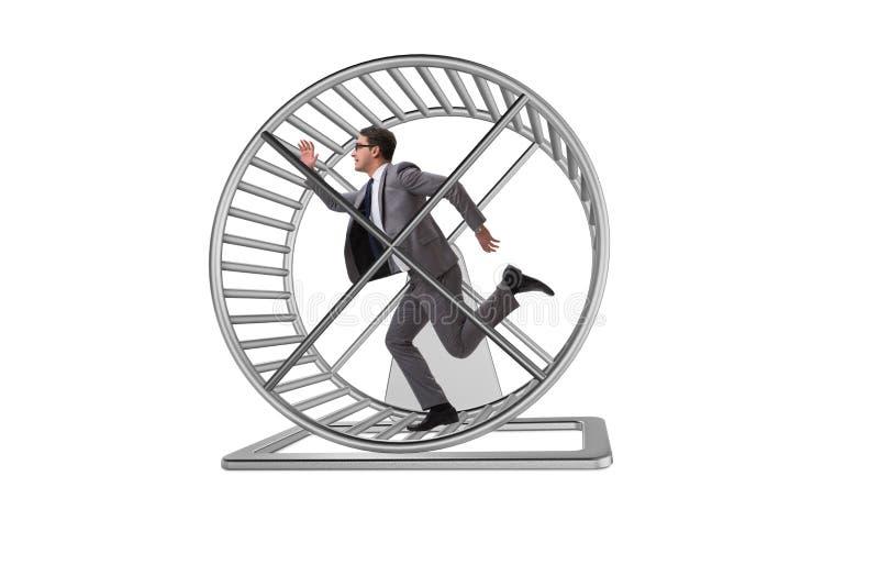 Il concetto di affari con funzionamento dell'uomo d'affari sulla ruota del criceto immagine stock