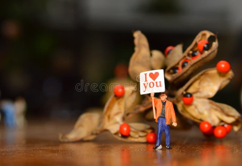 Il concetto di amore di mini figura porta un testo fotografia stock libera da diritti