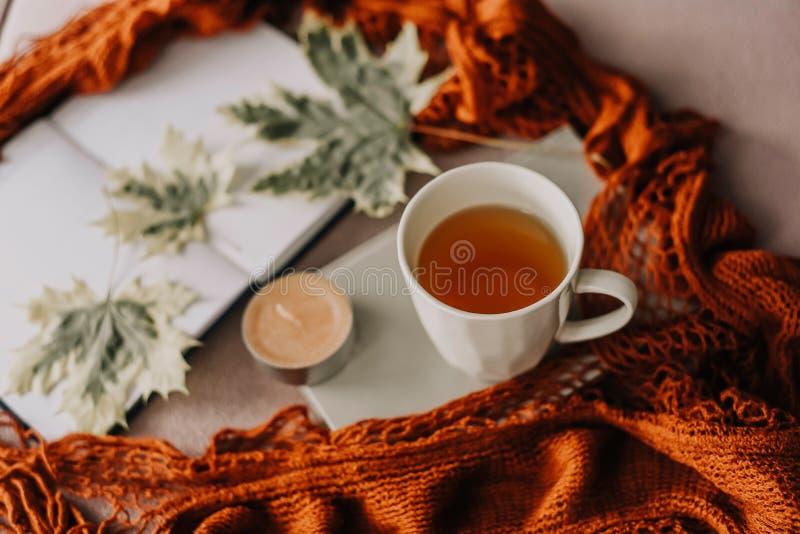 Il concetto di caduta di autunno, il taccuino, la sciarpa rossa, foglia di autunno, esamina in controluce fotografia stock