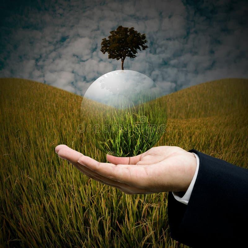 Il concetto sostenibile, uomo d'affari porta il globo dell'albero fotografia stock libera da diritti