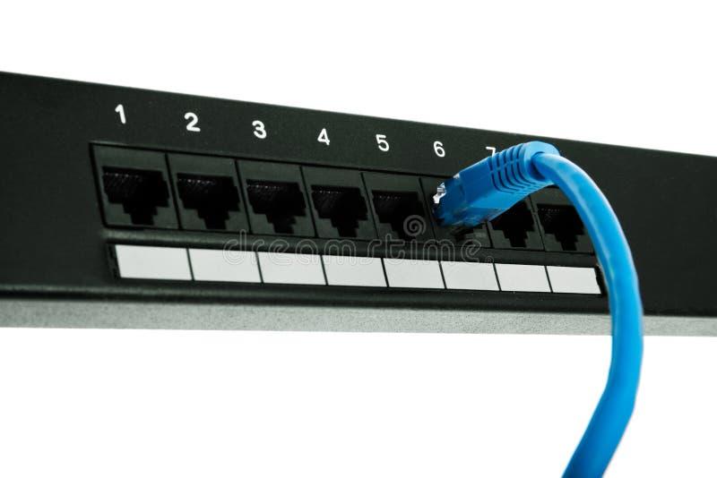 Il connettore è inserito il quadro d'interconnessione fotografia stock