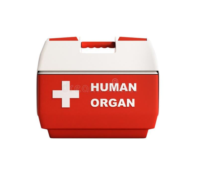Il contenitore chiuso 3d rosso di frigorifero dell'organo umano non rende ombra royalty illustrazione gratis