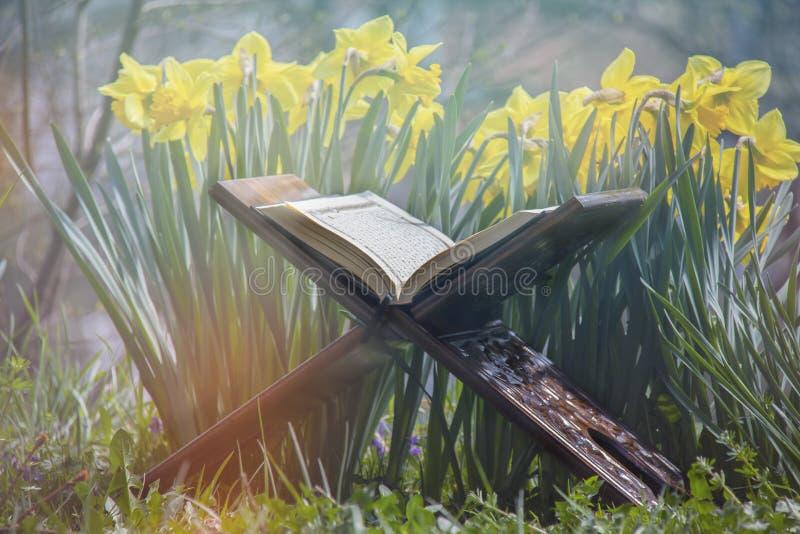Il Corano santo - libro sacro islamico fotografie stock