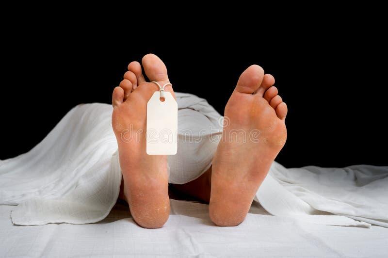 Il corpo morto del ` s della donna con l'etichetta in bianco sui piedi immagini stock