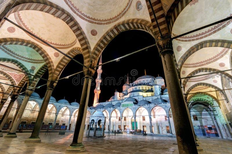 Il cortile interno della moschea blu alla notte a Costantinopoli, Tur immagine stock libera da diritti