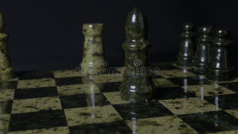 Il corvo bianco batte l'elefante nero sulla scacchiera Corvo sconfigguto di scacchi Mano del ` s della donna della tenuta dell'el fotografie stock libere da diritti
