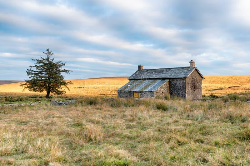 Il cottage solo sul attracca immagine stock libera da diritti
