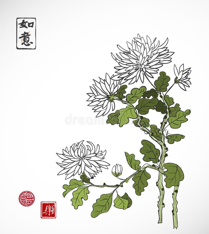Il crisantemo fiorisce nello stile orientale su fondo bianco Contiene il geroglifico - la bellezza, sogni avverati illustrazione vettoriale