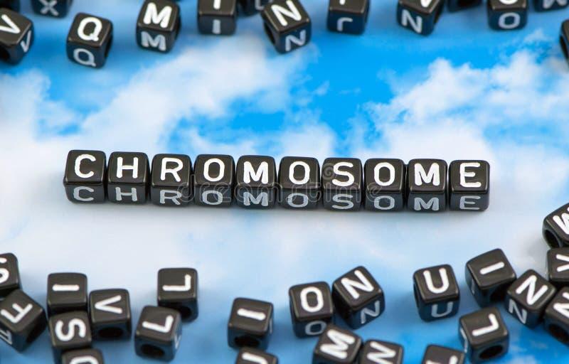Il cromosoma di parola fotografie stock libere da diritti