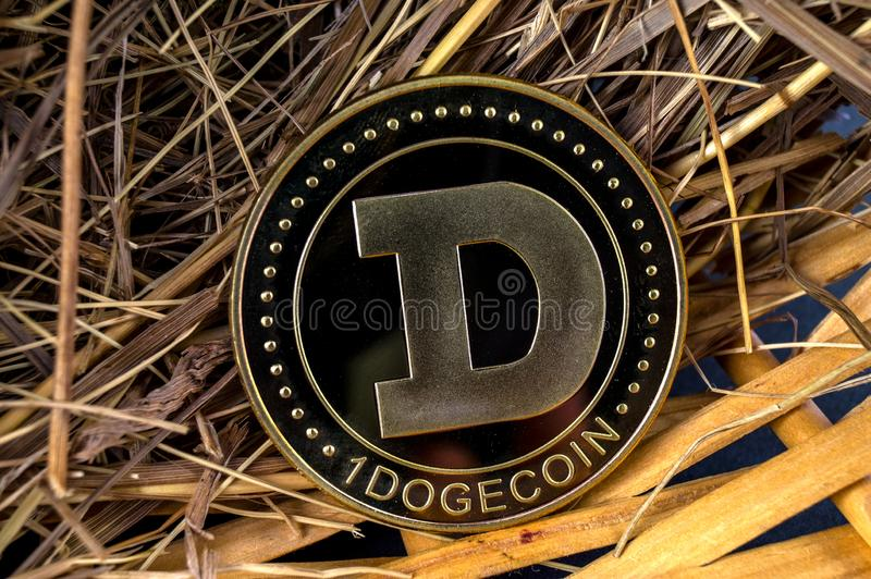 Il cryptocurrency del DOGE di Dogecoin significa del pagamento nel settore finanziario fotografie stock