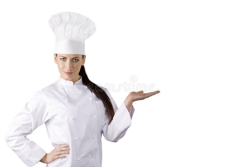 Il cuoco unico fotografia stock libera da diritti