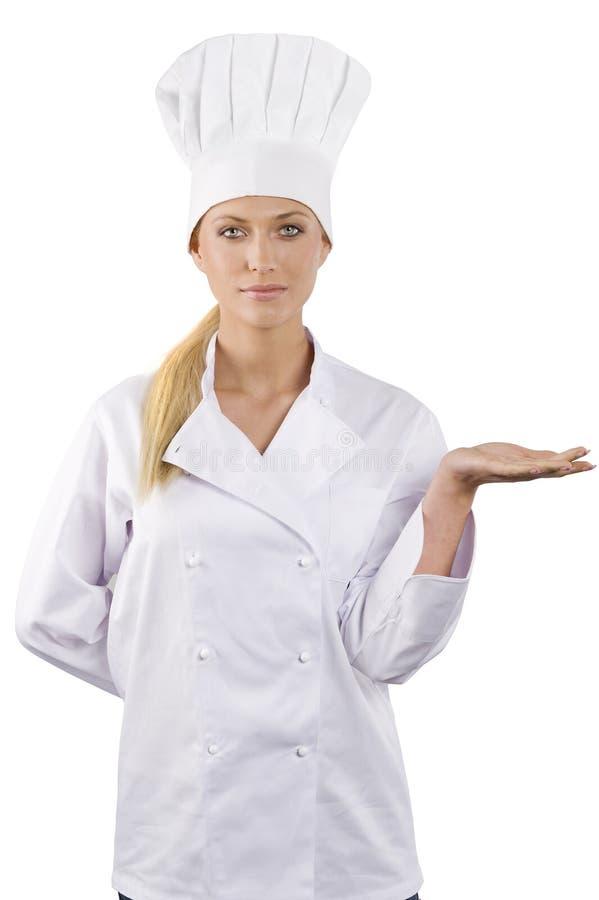 Il cuoco unico immagine stock