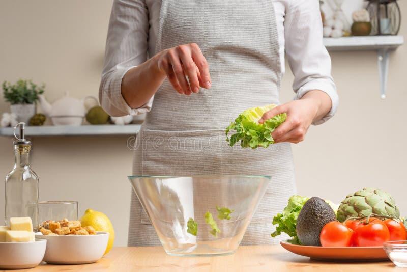 Il cuoco unico aggiunge le foglie verdi della lattuga, scalpore, nel corso di un'insalata vegetariana nella cucina domestica Fond fotografia stock