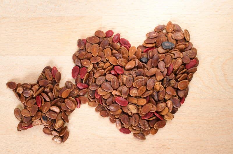 Il cuore e la stella modellano il seme dell'anguria arrostito rosso immagine stock